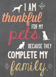 3517882-pets-are-family-quotes