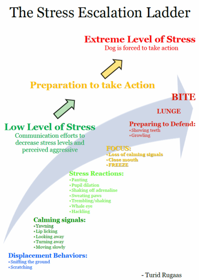 Stress-Escalation-Ladder-Rugaas